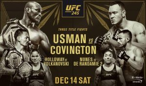 UFC 245 Flyer
